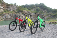 kids electric pocket bikes,High quality mountain strong EN15194 250watt e-bike for sale made in China
