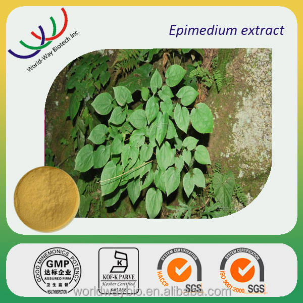 Alibaba China supplier 2016 hot sell improve sexual libido medicine material epimedium brevicornum p.e