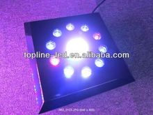 2012 hot selling unique dimmable high power deep drop led fishing lighting good for fish/Sargassum/algae