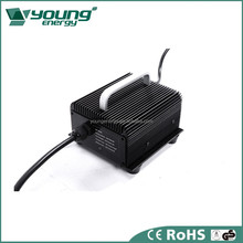 Professional factory direct sale 12 volt battery charger