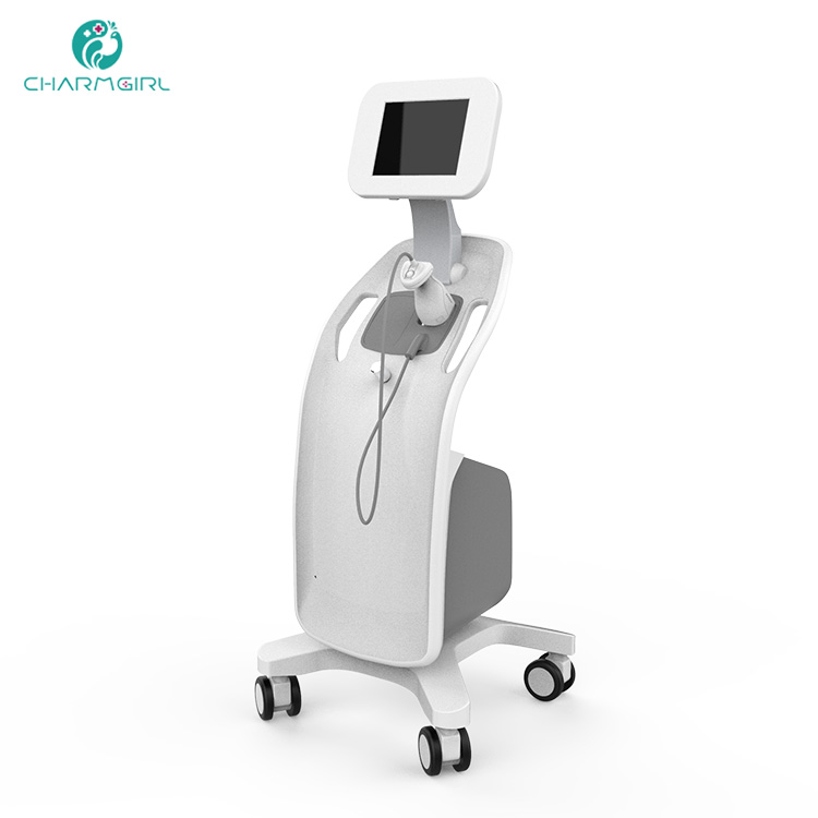 Portable 3d OEM / ODM Lipo HIFU ultrasound Liposonix / Liposonic machine with CE