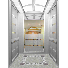 Low Price Safe Low Noise High Tech Passenger Elevator For Residential Used