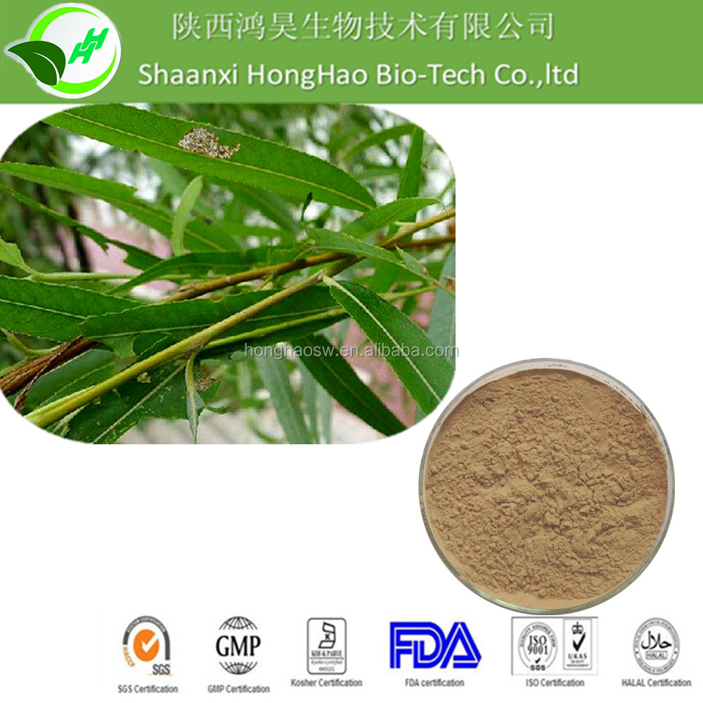 Free Sample 100% natural top quality white willow bark extract 25% salicin