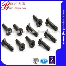 torx socket titanium beveled screw