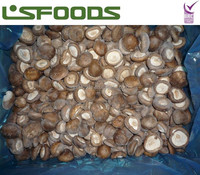 Frozen IQF China Shiitake Mushroom for export market prices for mushroom