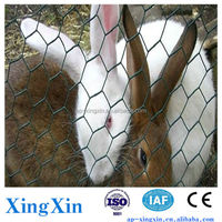 30 year old factory supply directly Chicken/ zoo Wire Mesh Hexagonal Wire Netting,chicken farm supplies (N - 007)