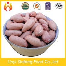 new products peanut kernels in china raw peanuts prices