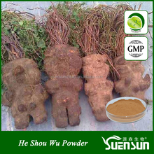 health food plant extract organic he shou wu