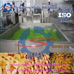 Fruit and Vegetable Tunnel Food Dryer and Dehydrator 0086 13703827012