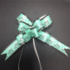 Wholesale gift packaging custom green printed butterfly bow