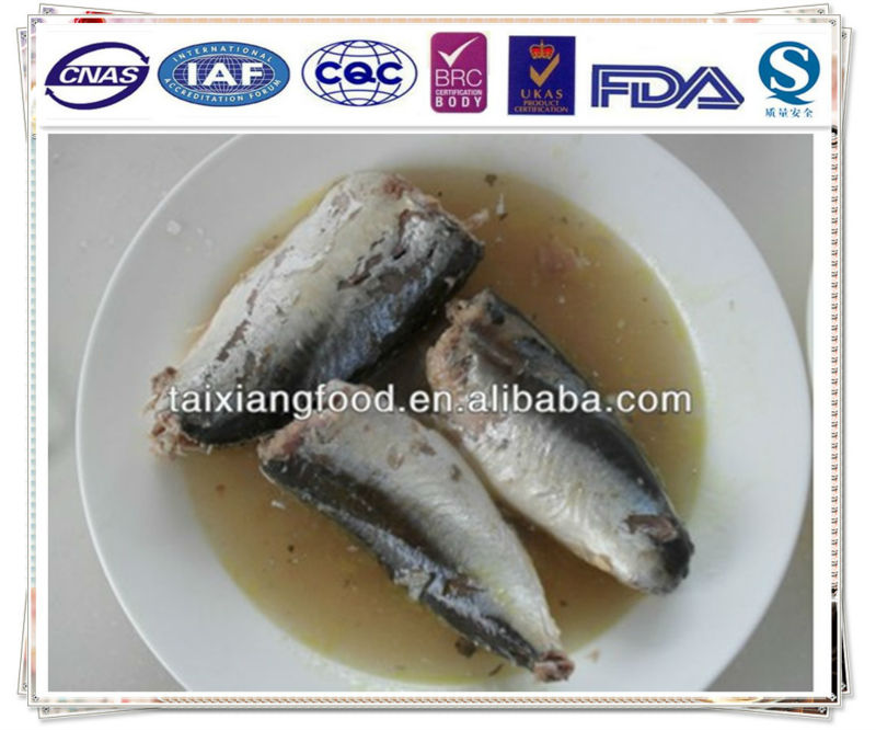 canned mackerel in brine/fish canned