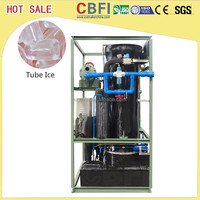 3 Tons Edible Ice Tube Maker In Africa