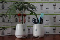 Beautiful Useful pen vase USB recharger for all kind of mobile phone With pen container flower vase and Charger function