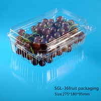 Large Disposable Plastic Fruit Container with clear hinged lid and air hole