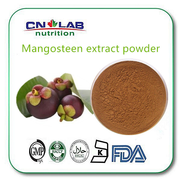 Nutural mangostein plant extract benefits of mangosteen/ mangosteen powder for juice