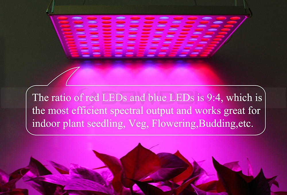 45W 225 LEDs Panel Led Grow Light for Indoor Plant