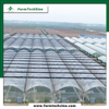 Best Selling Multi Span Greenhouse Plastic