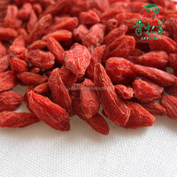 Dried goji berry from manufacturer with professional factory and farms