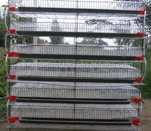 high efficiency high quality broiler ground feeding system made in China assemble quail cage