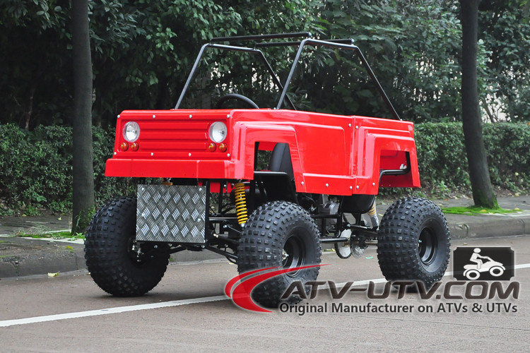 Attractive Price 8x8 amphibious atv with safety belt