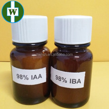 Indole acetic acid (IAA) Chinese supplier