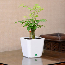 low price plastic flower pots with various colors and shapes