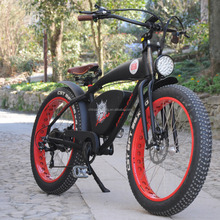Lohas/OEM Lower-price carbon covered frame electric mountain bike 500w electric bicycles