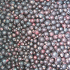 High Quality IQF Black Currants