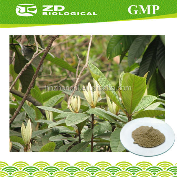 Types of Solvent Extraction Eriobotrya japonica extract Ursolic acid