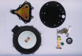 CNG auto gas reducer repair parts/spare parts