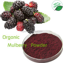 100% Pure Freeze Dried Mulberry Powder/ Mulberry Juice Powder Concentrate Powder