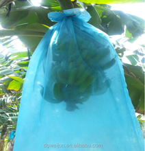 China Guangdong prevent insects blue banana cover bag Banana bunch bag