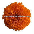 Marigold Extract Feed Grade Lutein - natural poultry feed additive