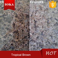 wholesale honed tropical brown granite