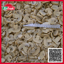 canned mushroom slice for best quality hot sale