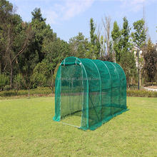 Durability Polytunnel Walk-In Green House Farms Sale Tomato Seed For Greenhouse