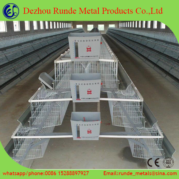 Poultry cage/chicken layer cage /quail cage for sale
