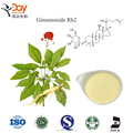 Panax Ginseng Root Extract Powder ginsenosides 20% Rh2 factory price