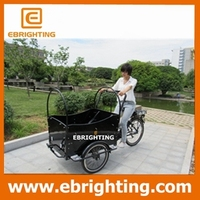 weirdo cheapest gasoline tricycle cargo bike for family