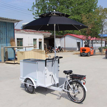 Best freezer three wheel electric ice cream van tricycle