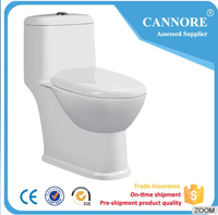 Cheap price one piece closet siphonic toilet water closet small size
