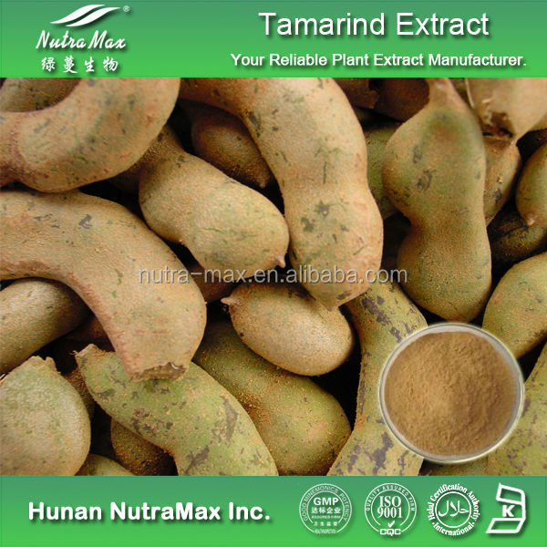 High Quality Tamarindus Indica Extract,Tamarindus Indica P.E.,Tamarindus Indica Extract Powder