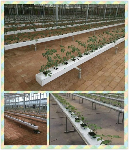 Indoor hydroponic NFT growing system 1inch 1.5 inch 2 inch agriculture rock wool