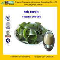 GMP Certified Manufacturer Supply Natural Kelp Extract