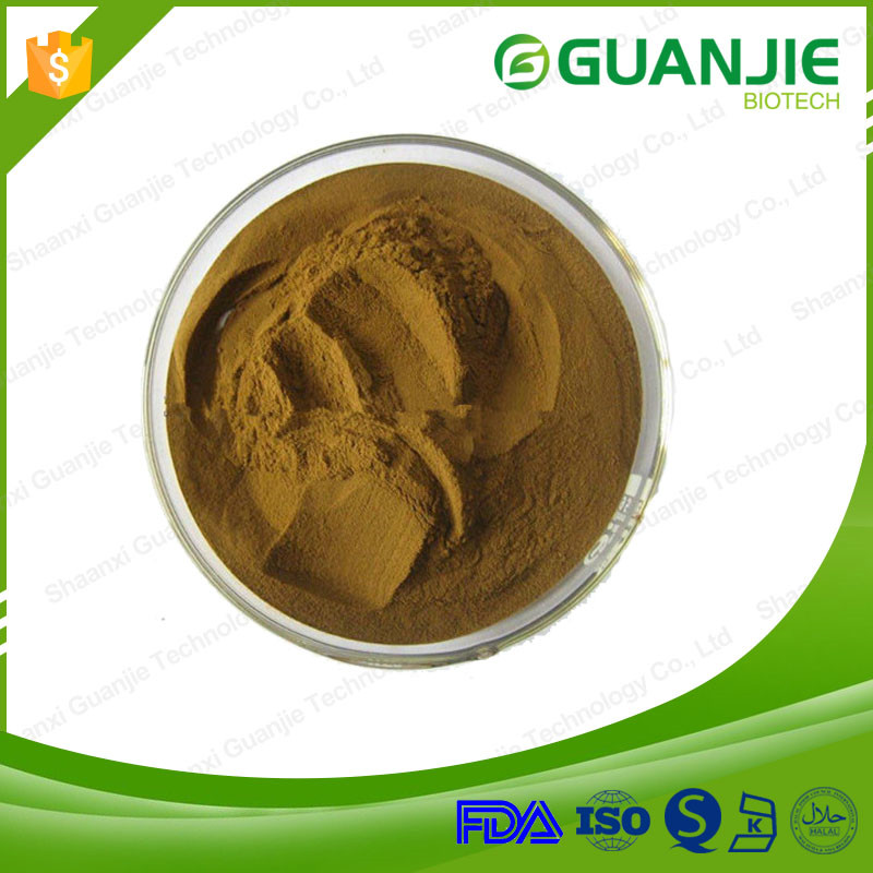 Most popular burdock root price gold supplier