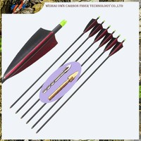 Hunting Carbon Fiber Arrow