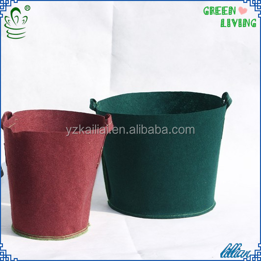 new products for 2014 growing spinach vegetable gardening growing tomatoes in pots