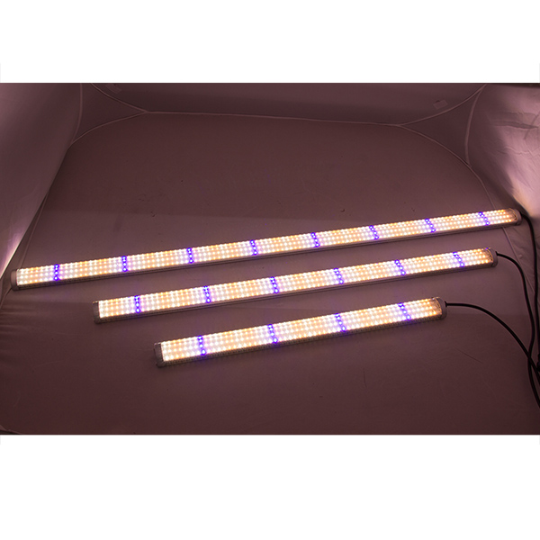 1200mm 240 Degree Beam Angle LED Bar Grow Light, SMD LED Grow Light Strip, Grow Bars for Vertical farm/Indoor Plants/Flower
