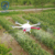23L Hot sale agricultural spraying drone sprayer with high quality