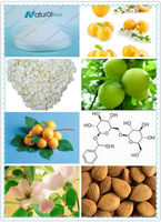 Bitter Apricot Seed Extract powder 98% 99%